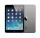 Apple iPad mini with Retina display 16Gb Wi-Fi Space Grey